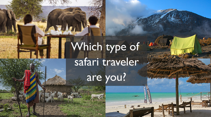 Which type of safari traveler are you?