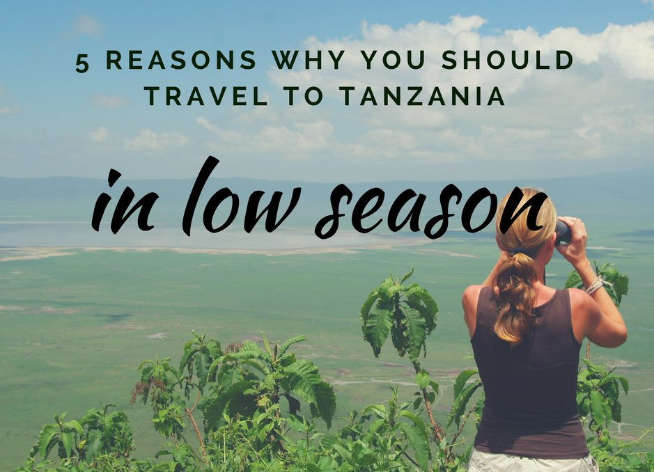 5 Reasons why you should travel to Tanzania in low season