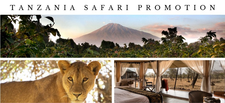 Tanzania private safari promotion 2019