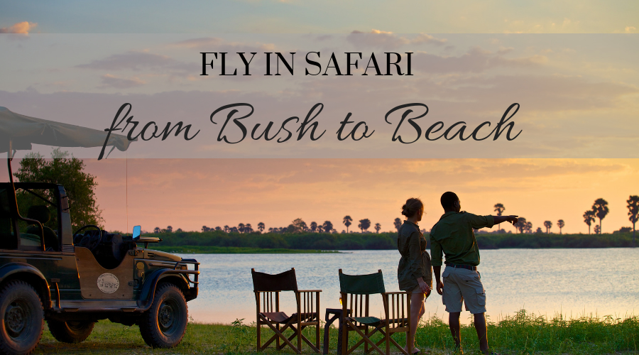 NEW: Luxury Fly-In Safari from Bush to Beach in southern Tanzania