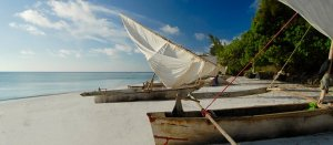 Traditional dhow boats at the beach Tanzania