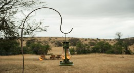bologonya-under-canvas-serengeti-tanzania-private-safaris