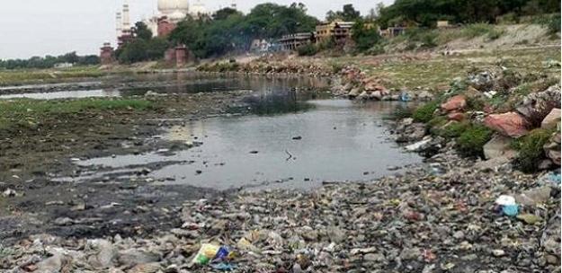 fenomena ini di'temukan' oleh beberapa penduduk Mumbai