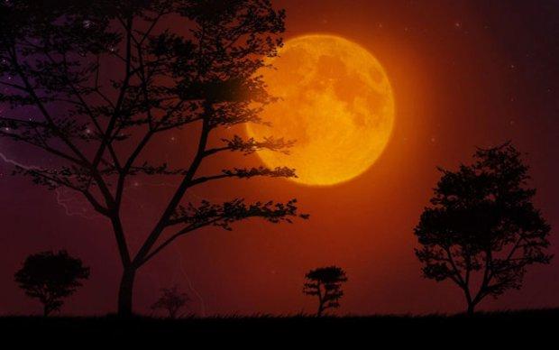 Bulan di malam hari