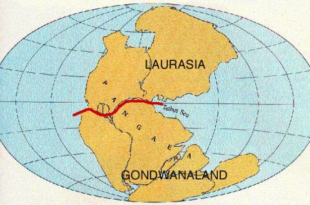 Benua Gondwana dan Laurasia