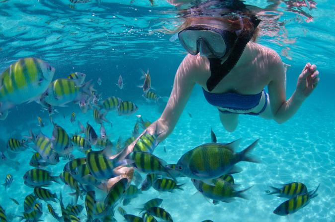 woman snorkeling in Montego Bay