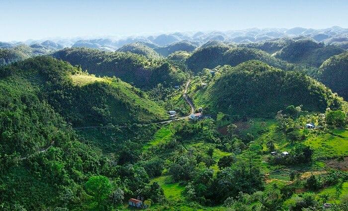 Blue Mountains of Jamaica