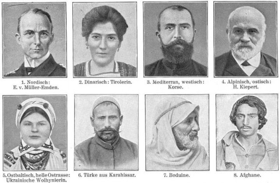 "Meyers Blitz-Lexikon (Leipzig, 1932) divides ""Europäid"" types into: Nordic race, Dinaric race, Mediterranean race, Alpine race, East Baltic race, Turks, Bedouins, and Afghans."
