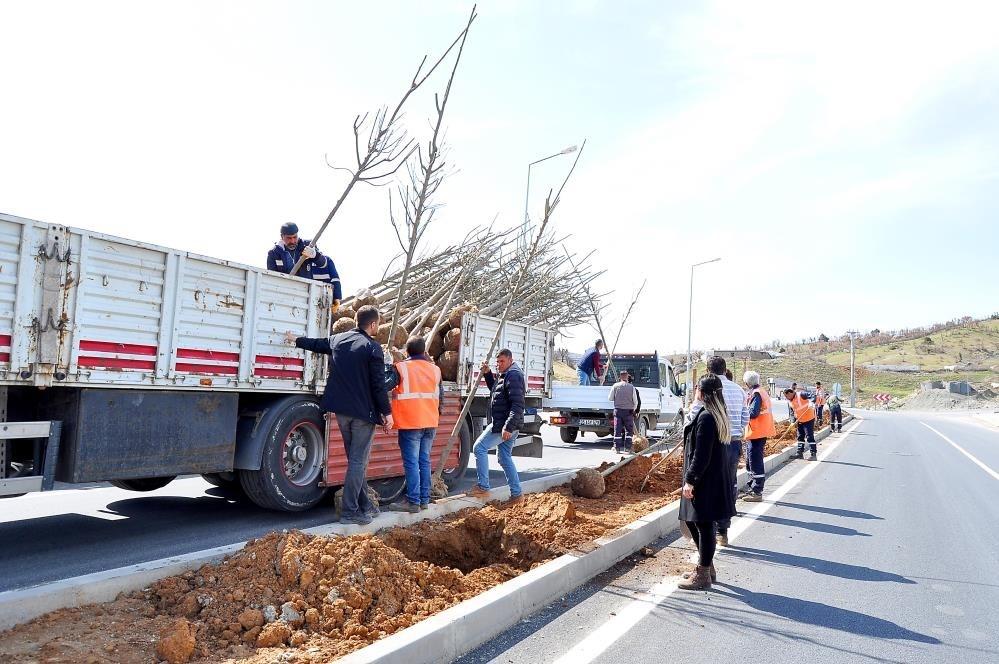Diyarbakır'ın ilçelerinde yeşillendirme çalışmaları
