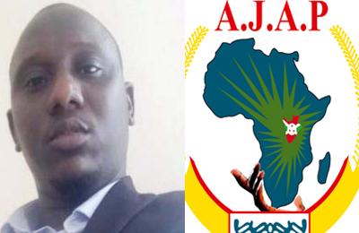 Diallo Idrissa HAMADI