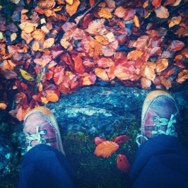 Looking down, pretty leaves and red shoes