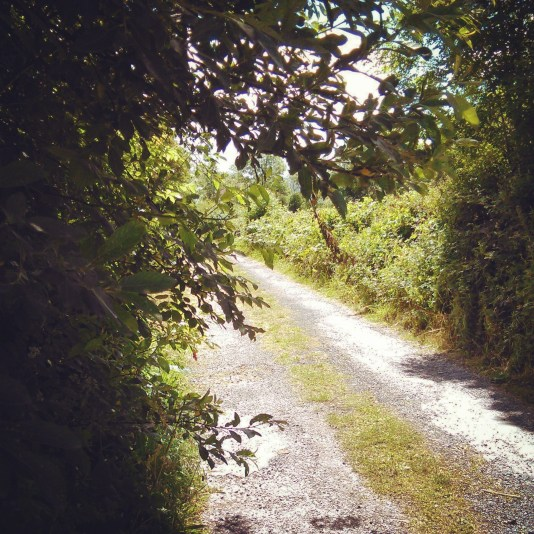 walking Oughterard
