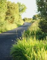 walking Connemara