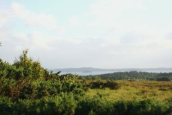 Lough Corrib and Connemara view