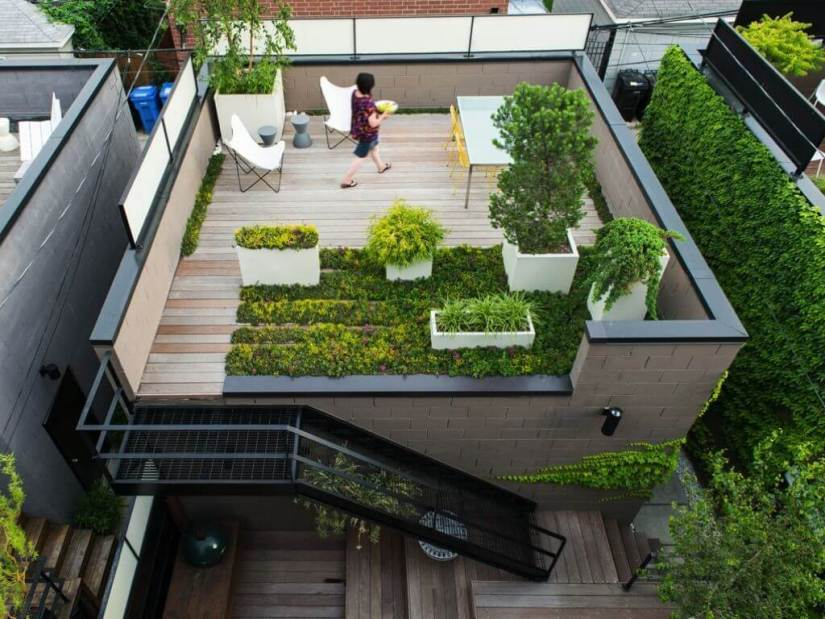Create an open landscape design