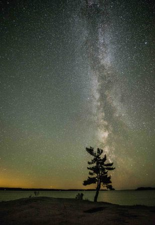 Killarney Stars