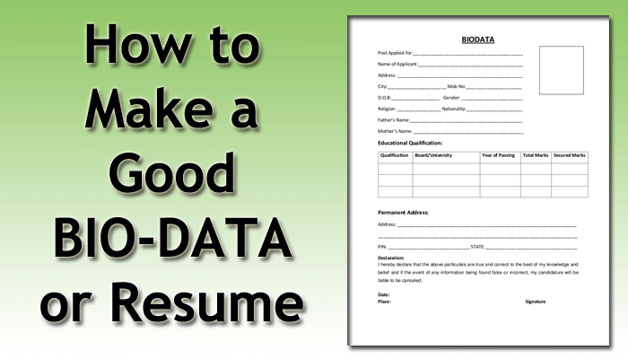 How To Make An Effective Bio Data For Applying In