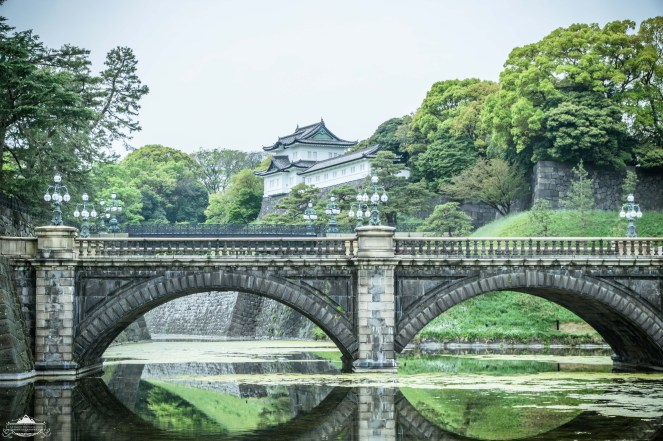 Nijubashi Bridge(s) are the two main entrance bridges to the Imperial Palace grounds and is perhaps Tokyo's most famous, and famously photographed, bridge. There are actually two bridges here, the foreground one made of stone, and in the background (you can barely make out in this frame) made of steel. To read more, visit patreon.com/ajbarse