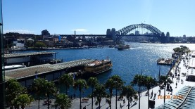 Sydney Harbour from Carhill Express Way