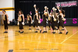 Voyager Spring Show-3130
