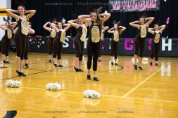 Voyager Spring Show-3189