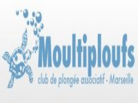 lg_Logo Moultiploufs