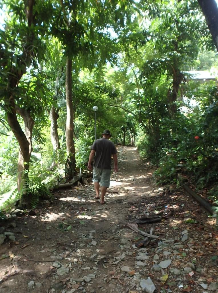 Arnan walking in the jungle