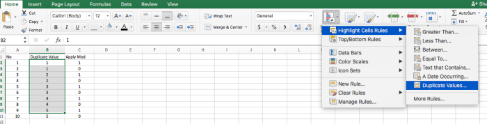 Excel Duplicate Value