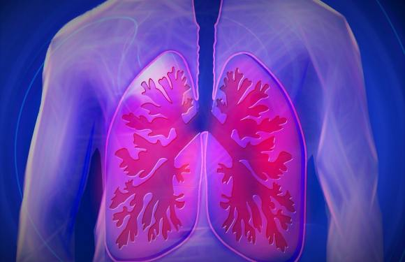 How To Turn Your WHAT FOODS IMPROVE LUNG HEALTH From Zero To Hero