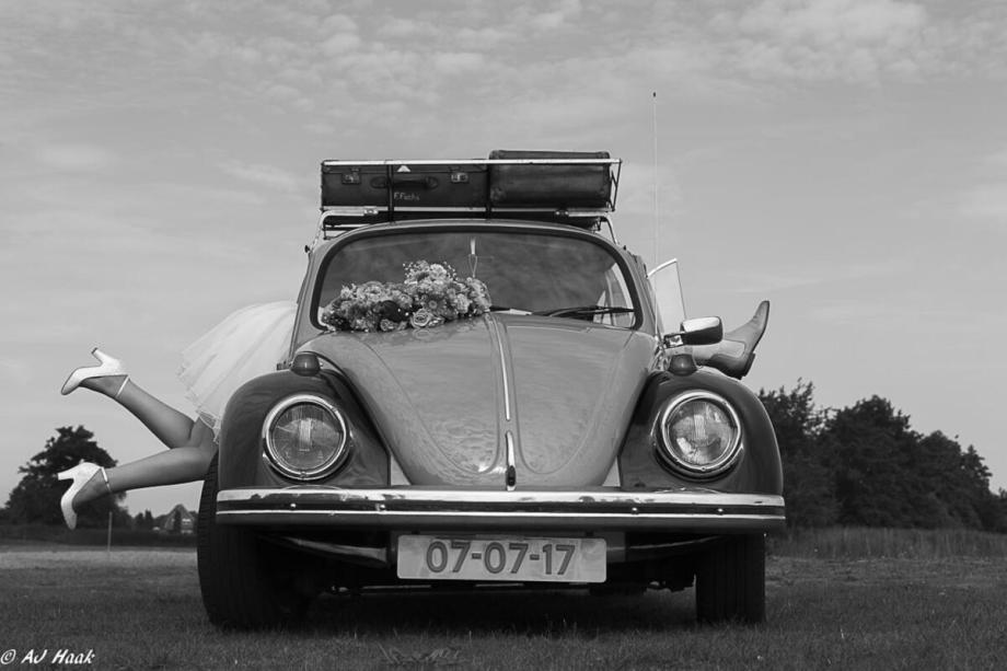 MG 1953