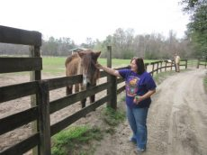 Angela petting Harriet, an older horse in one pasture