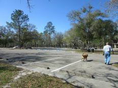 South parking lot and picnic areas