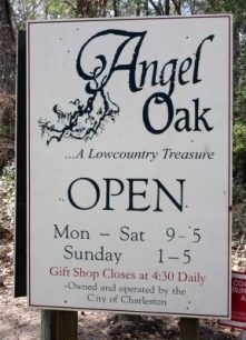 Angel Oak left a real impression on me years ago.