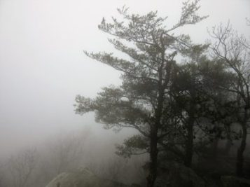 One view at Bald Knob at end of trail