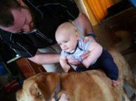 Dad helping Hershel sit on Chewie