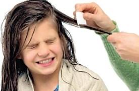 القمل الذي يصيب الأطفال…التعريف وطرق العلاج