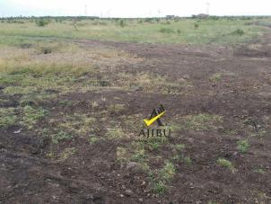 Ajibu Ruiru Plots for Sale
