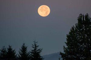 Full moon from Olympia, 18Aug2016, Photo by Allan J Jones