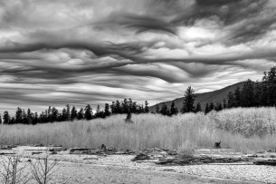 Storm coming up the Quinault, Olympic National Park, 14Feb2017, Photo by Allan J Jones