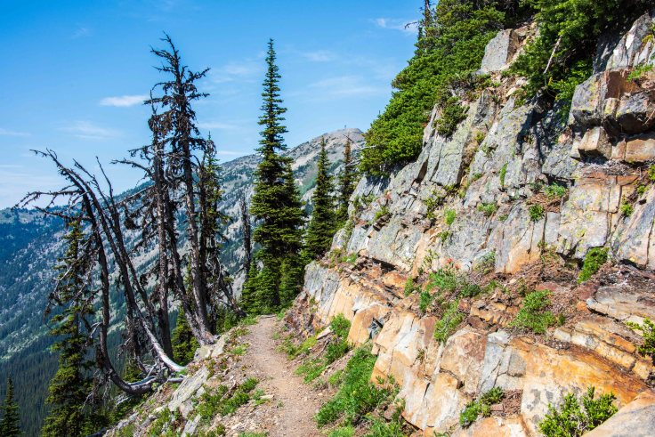 Pacific Crest Trail near Hart's Pass, North Cascades, WA by Allan J Jones Photography