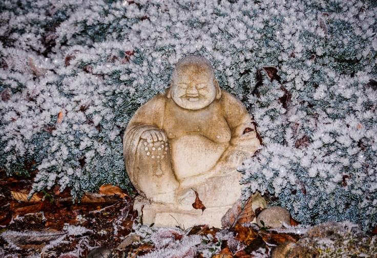 Buddha in the frost by Allan J Jones Photography