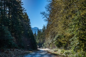 Elwha River Road in Winter HDR by Allan J Jones Photography