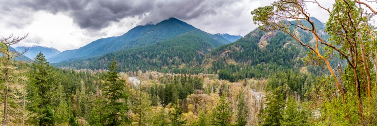 Elwha Valley View by Allan J Jones Photography