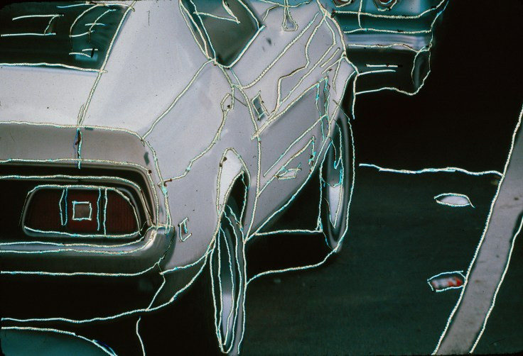 Mustang with Emulsion Scratches by Allan J Jones