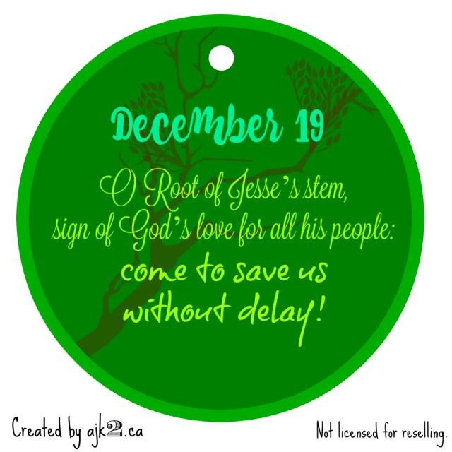December 19 - site