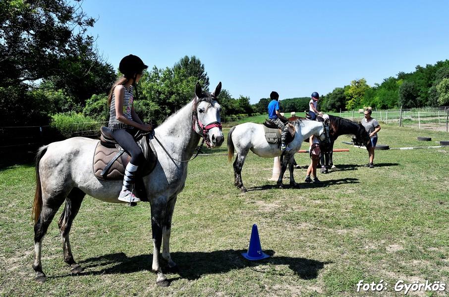 ismerkedés lovak szerelmesei