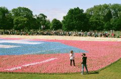 In London's Hyde Park, activists laid a carpet of flower petals to represent the lives of children lost each year through malnutrition. Photo by Ismar Badzic via Flickr.