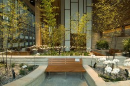 The Thea and James Stoneman Healing Garden at the Dana-Farber Cancer Institute is a source of tranquility and relaxation for nurses, patients, and families. Photo by Sam Ogden, Dana-Farber Cancer Institute.
