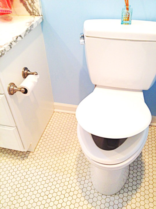 photo of slow-close toilet seat