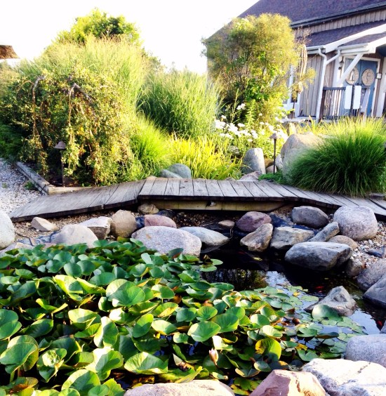 Photo of gardens and goldfish pond